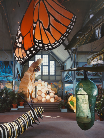 philadelphia-zoo-tree-house-05